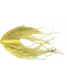 COMPETITION Barbless hooks