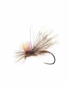 DRY FLY SPECIAL